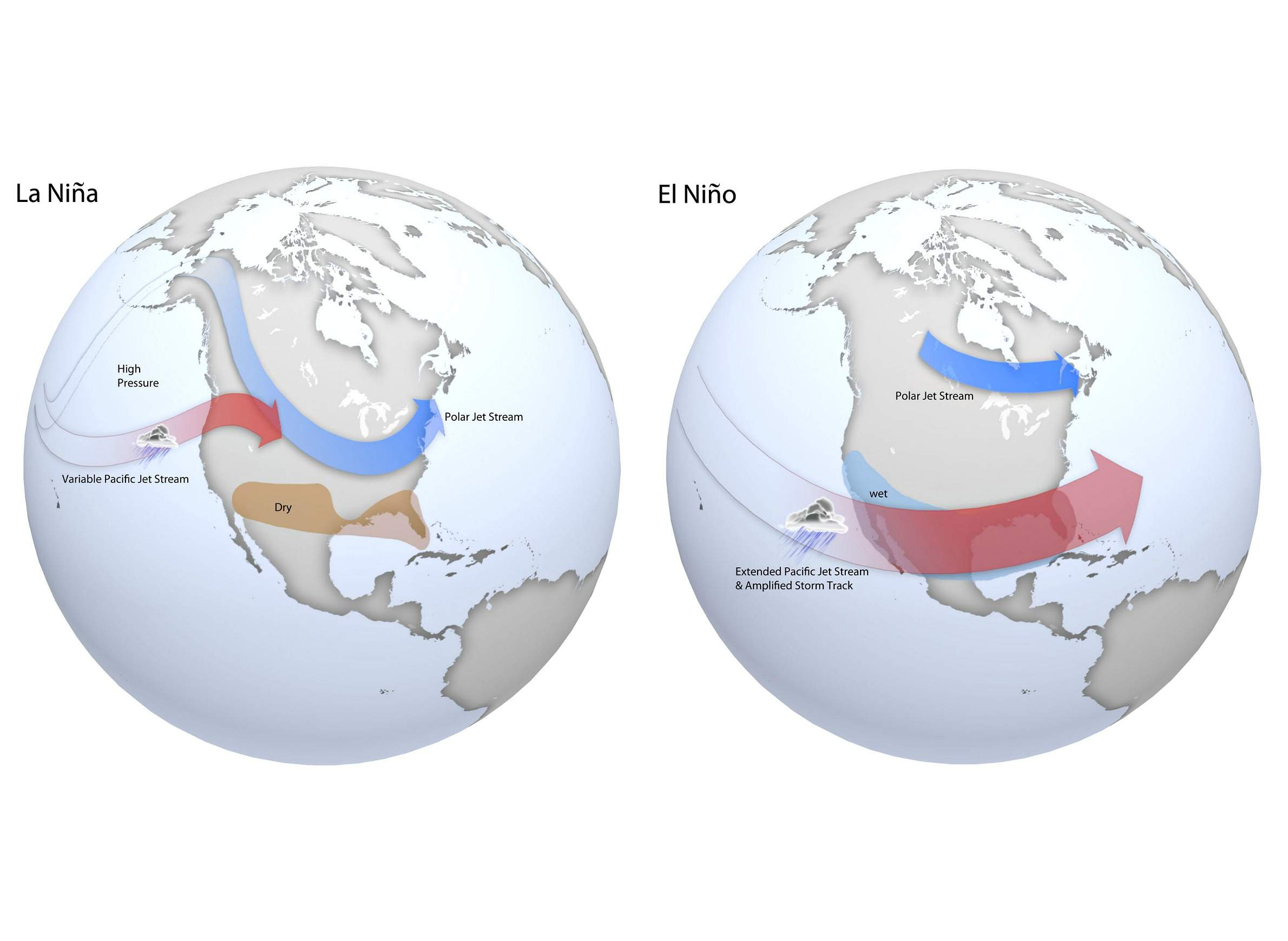 ENSO cycle map